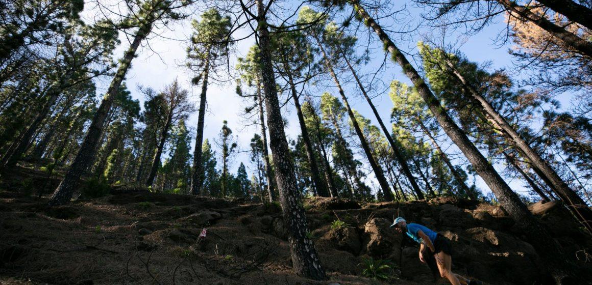 La Artenara Trail abre inscripciones este jueves para su 12ª edición