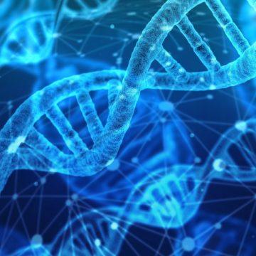 Museos de Tenerife organiza unas jornadas para descubrir los secretos del ADN